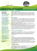 Annual Report July 2013